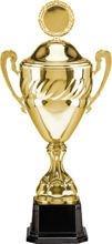 Puchar metalowy z przykrywką 3033